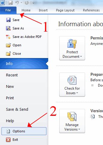 File Option Microsoft Word